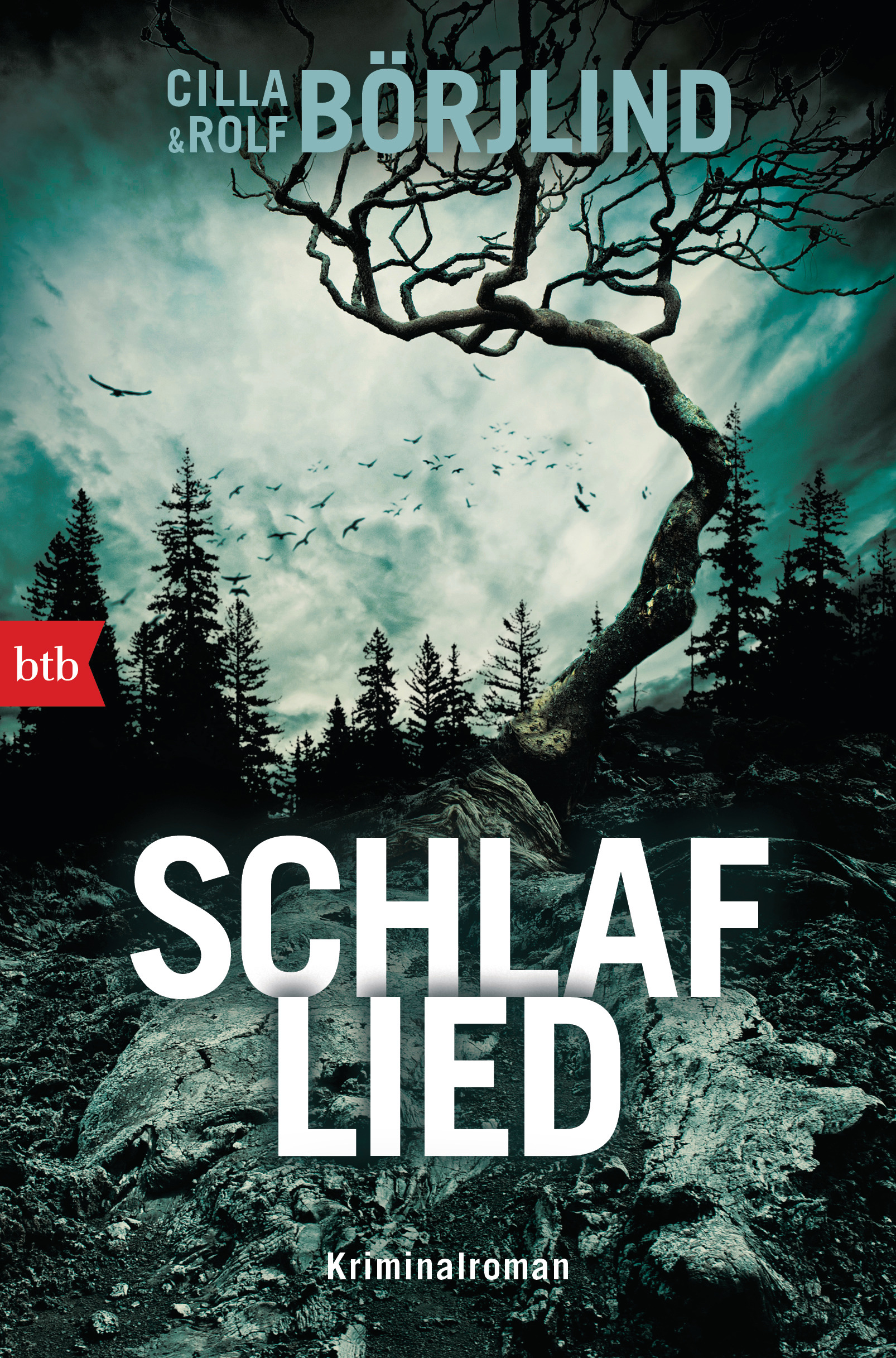 Schlaflied Book Cover